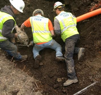 three men doing teamwork